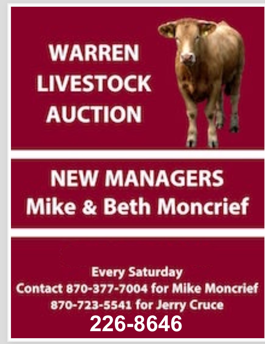 Warren Livestock Auction